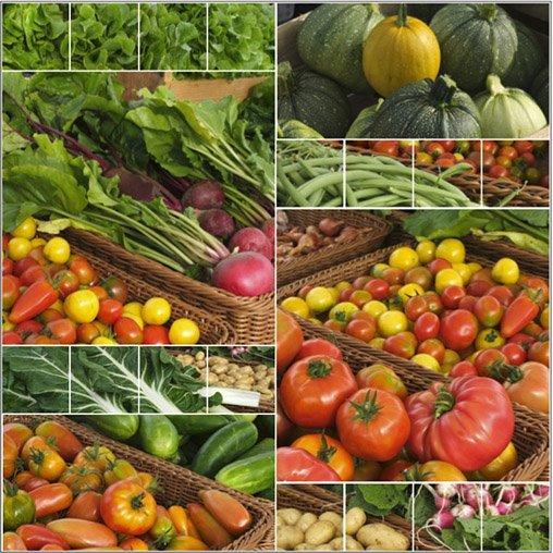 Légumes étal Erdeven